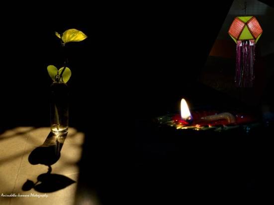 Green Diwali By Aniruddha