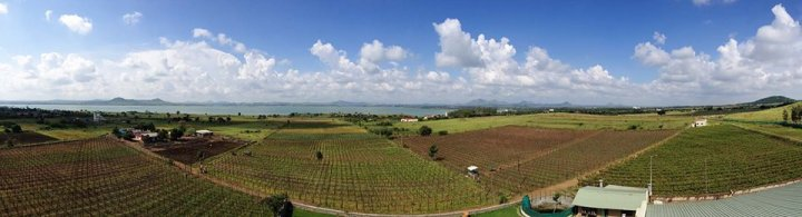 Panoramic View from York's Tasting Room