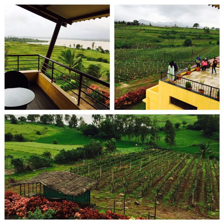 Vallonne Vineyards Nashik