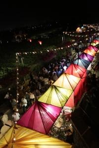 SulaFest 2018 Nashik Grape Stomping Wine Music Tinder