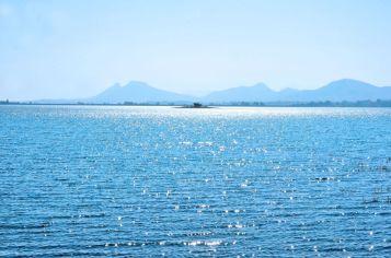 Drumstick Lagoon Nashik